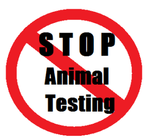 Beauty Products That Test onAnimals